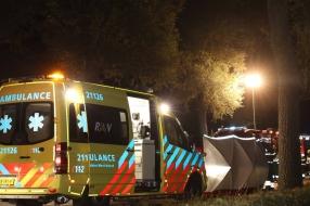 Automobilist zwaargewond na ernstig ongeluk in Mill