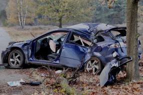 Automobiliste bij Mill rijdt twee bomen uit de grond en raakt zwaargewond