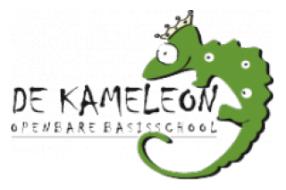 OBS de Kameleon Mill