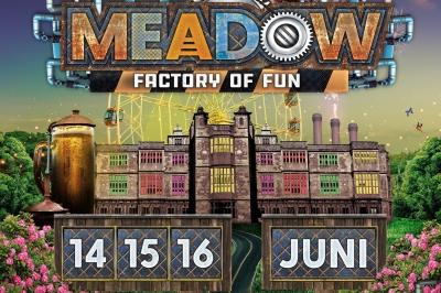 Evenement: Driedaags muziekfestival Meadow (4e editie)